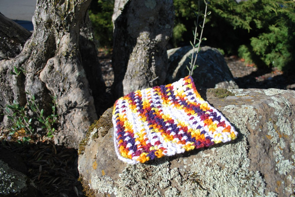 Dishcloths 001