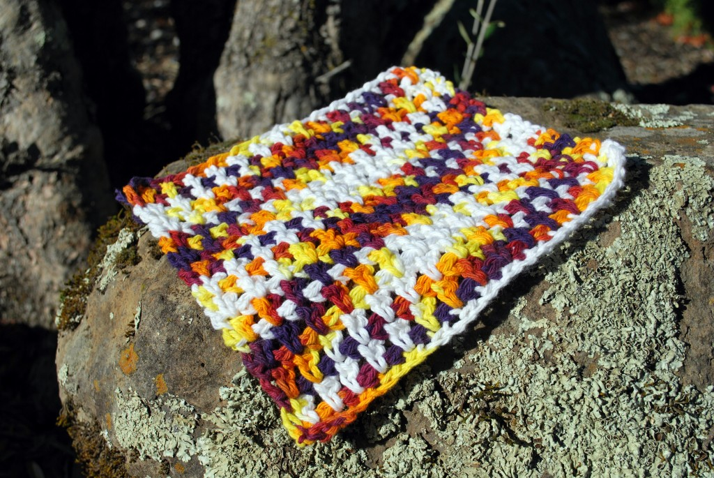 Dishcloths 002