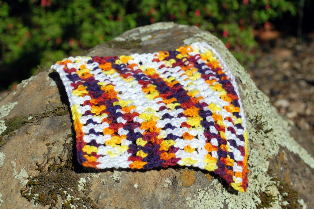 Dishcloths 003
