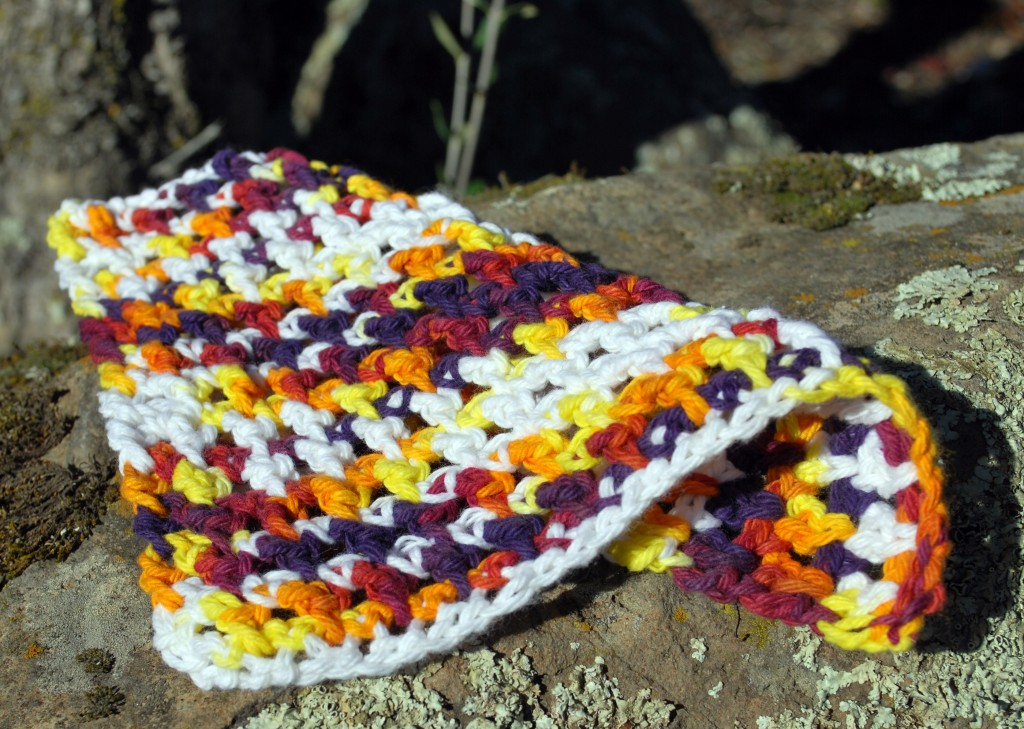 Dishcloths 005