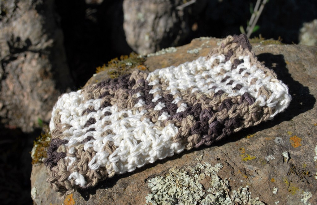 Dishcloths 010
