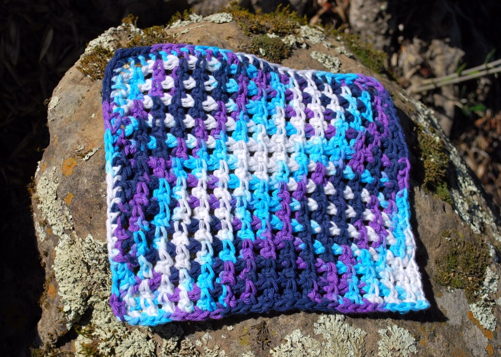Dishcloths 022