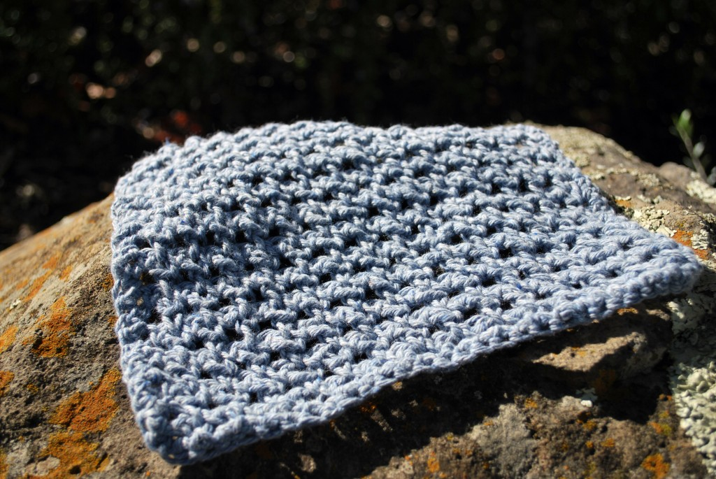 Dishcloths 032