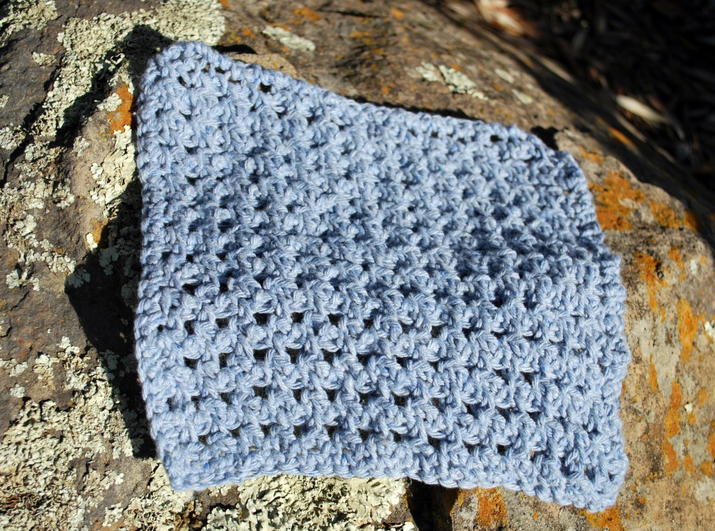 Dishcloths 033