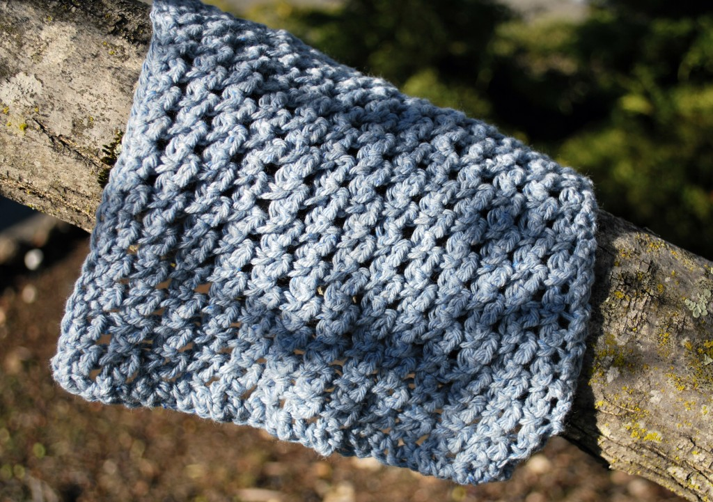 Dishcloths 034