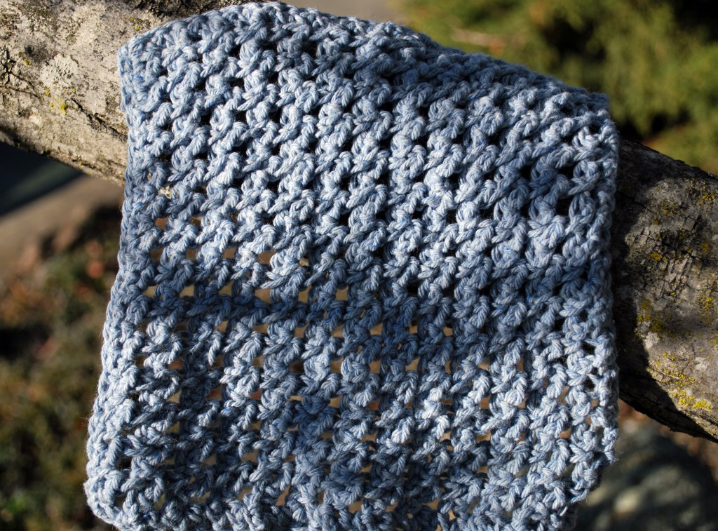Dishcloths 035